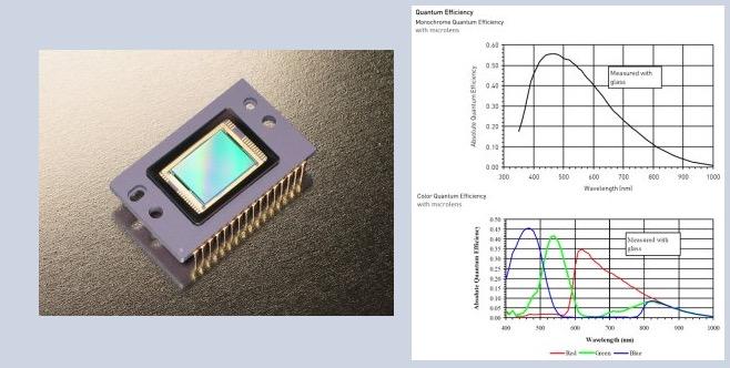 Camera Moravian CCD modello G2-2000 Colorda 2 Mpx (1600 x 1200)