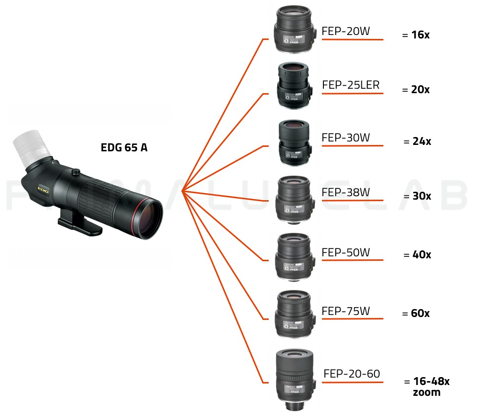 Nikon Spotting scope EDG 65-A (corpo angolato)