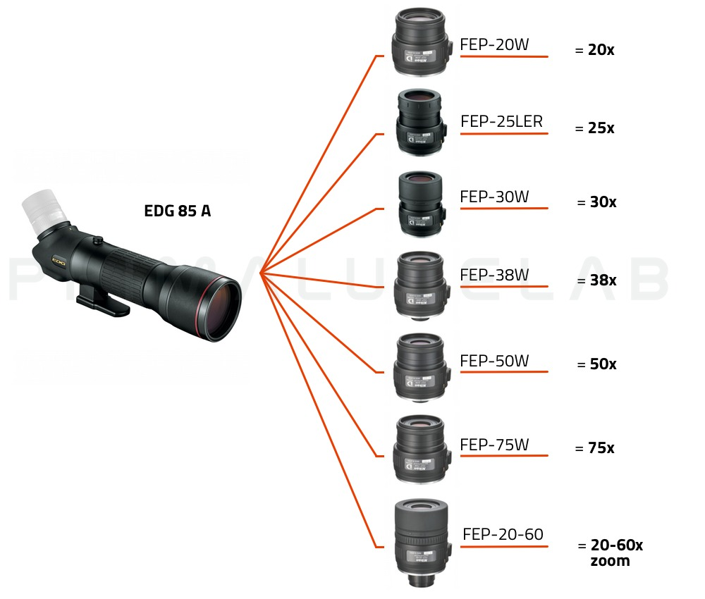Nikon Spotting scope EDG 85-A (corpo angolato)