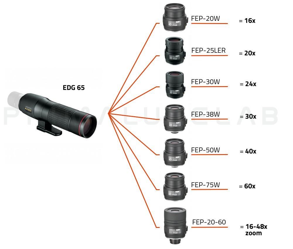 Nikon Spotting scope EDG 65 (corpo dritto)