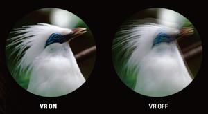 Nikon Spotting scope EDG 85-A VR (corpo angolato)