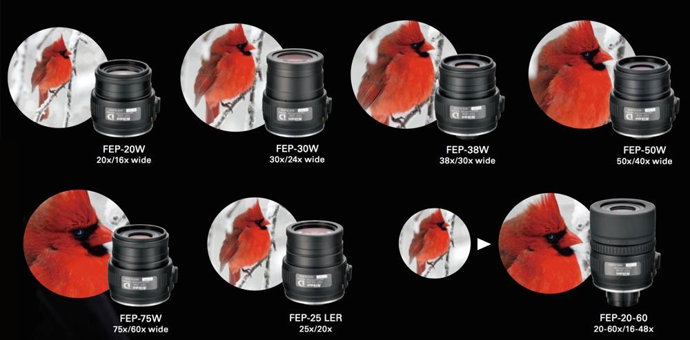 Oculare FEP 25 LER 20X/25X LER per EDG